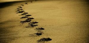 sand-768783_640-300x200.jpg