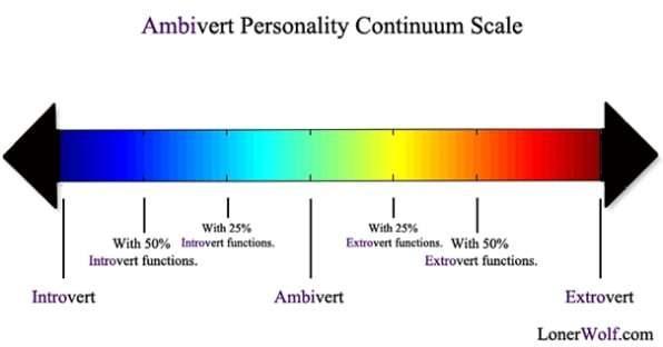 extrovertandintrovertspectram.jpg